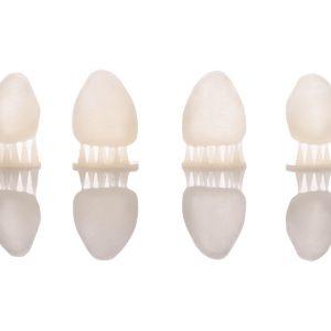 Laboratory dental photography 15